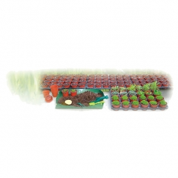 Garden Grow Kit with 24 Pots