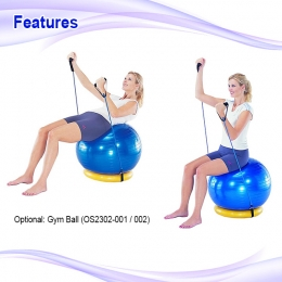 Exercise Ball Ring